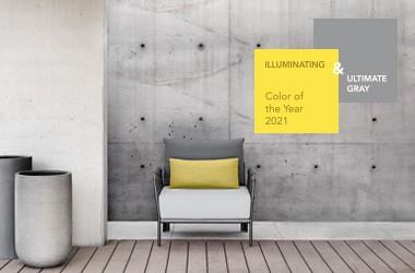 color2021_web_home